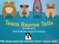 AWLA Team Rescue Tails